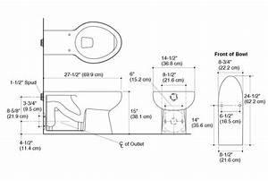 35 Rear Outlet Toilet Plumbing Diagram