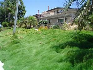Hillside Landscaping Landscape Slope Landscaping Network Beautiful Hillside Landscaping