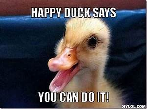 mereduck-meme-generator-happy-duck-says-you-can-do-it ...