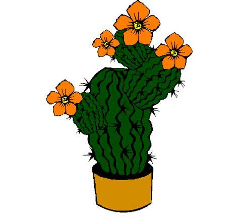 fiori di cactus disegno fiori di cactus colorato da utente non registrato