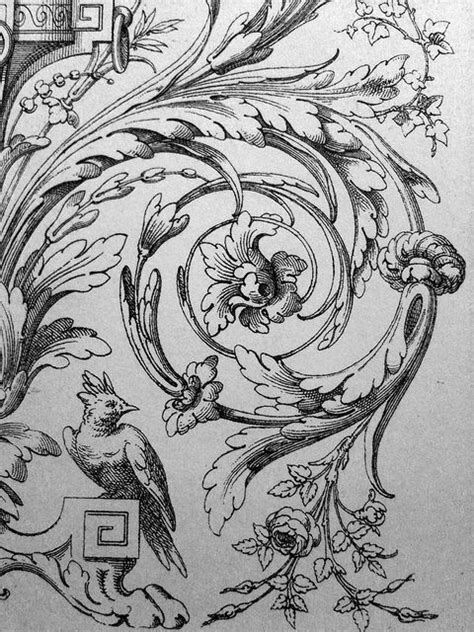 ornament drawings filigree victorian acanthus scrolling