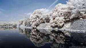 Full HD 1080p Japan Wallpapers HD, Desktop Backgrounds ...