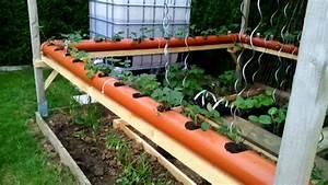 Wann Setzt Man Sträucher Um : wann pflanzt man erdbeeren erdbeeren pflanzen balkon ~ Articles-book.com Haus und Dekorationen