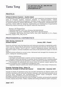 professional level resume samples resumesplanetcom With professional cv resume writing service