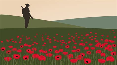 poppy fields remembrance day daily hive
