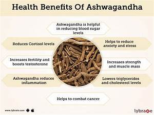 Ashwagandha Benefits And Its Side Effects