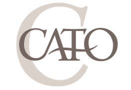 cato credit card application  images credit card