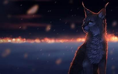 Warrior Cats Desktop Cat Fantasy Wallpapertag