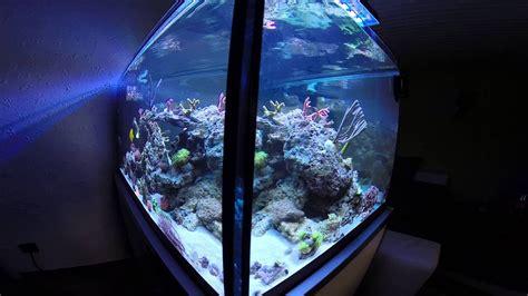 aquarium 500 liter saltwater meerwasser aquarium 500 liter