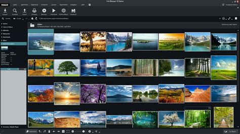 magix photo manager  software downloads image viewers