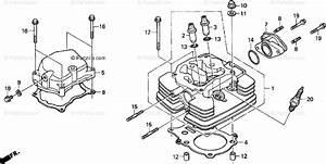 34 Honda Recon Parts Diagram