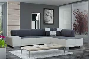 salon moderne gris harmonie esthetique With tapis moderne avec canapé classique style
