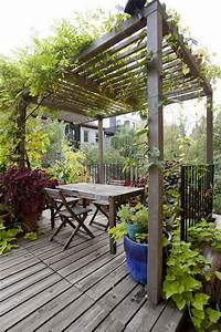 Kletterpflanzen Für Pergola : holzterrasse holz pergola kletterpflanzen rustikaler tisch wohnen garten terrasse ~ Markanthonyermac.com Haus und Dekorationen