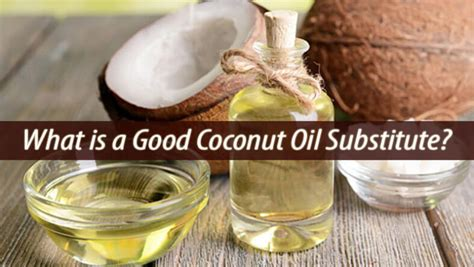 what can you substitute for olive what is a good coconut oil substitute natural home remedies guide