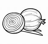 Onion Coloring Clip Vector Pages Colouring Illustrations Template Children Crab Illustration Similar sketch template