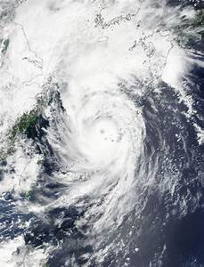 NASA sees Typhoon Goni moving through East China Sea