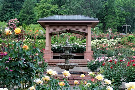 the city of roses portland oregon traveling with