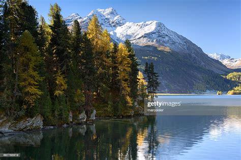Lake Sils In Autumn Engadine Valley Switzerland High Res