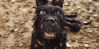 Chief Isle Giphy Dogs Isla Film Ini