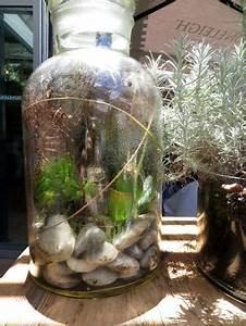 Bonsai Im Glas : bepflanzte gl ser bild von metro st james sydney tripadvisor ~ Eleganceandgraceweddings.com Haus und Dekorationen