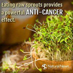 Eating raw spro... Raw Eating Quotes