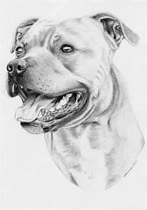 kurri2c.jpg (692×990) | köpek dövmeleri | Pinterest ...
