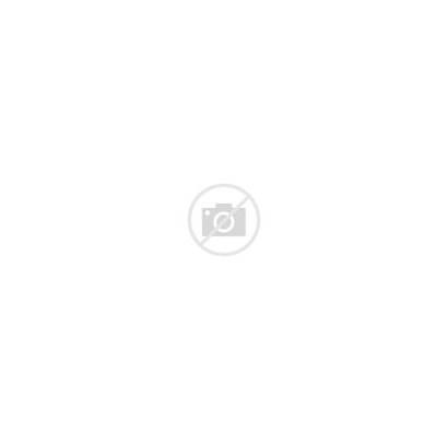 Tiger Mascot Clemson Head Vector Clipart Cartoon
