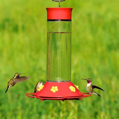 hummingbird feeder recipe try hummingbird food made in a pinch