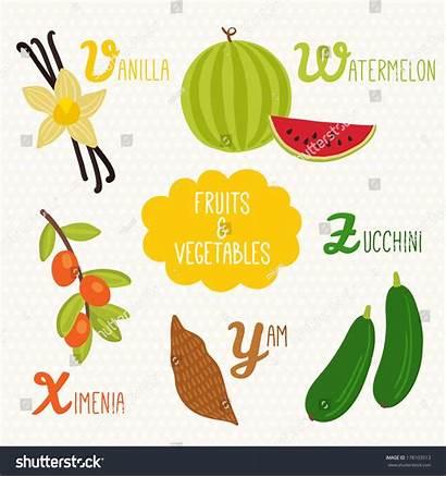 Vegetables Fruits Letters Alphabet Vegetable Beginning Ximenia