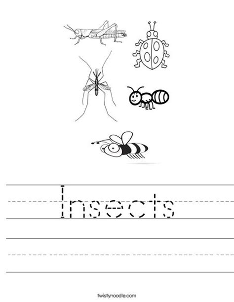 Insects Worksheet  Twisty Noodle
