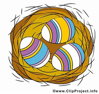 Nest Clipart Eier Cartoon Cliparts Osterbilder Nido
