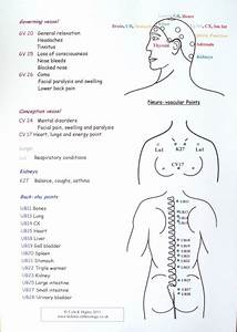 Natural Therapies And Courses