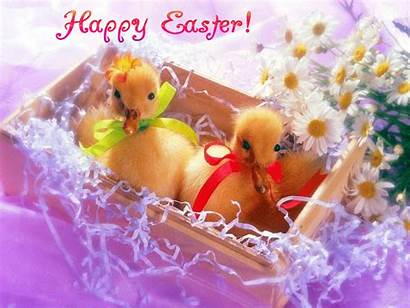 Easter Happy Wishes Animated Gifs Animation Thursday