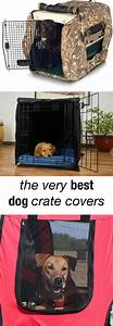 soundproof dog house 28 images dog house dog kennels With soundproof dog house