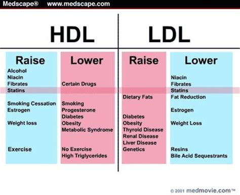 25 best ideas about hdl ldl on hdl cholesterol lowering ldl and cholesterol
