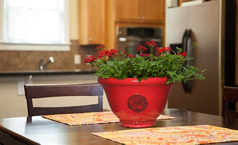 southern patio planters pots planters containers southern patio 174