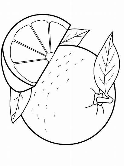 Orange Pages Coloring Fruits Printable Recommended Favorite