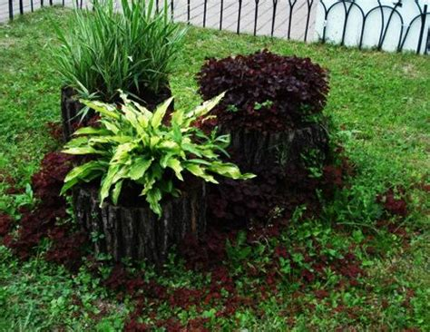 Garden Decoration Tree by 25 Ideas To Recycle Tree Stumps For Garden And Yard
