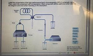Solved  Label The Components Of The High