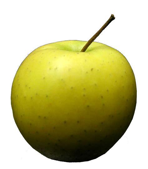 comment choisir un couteau de cuisine les cliparts de clo pomme