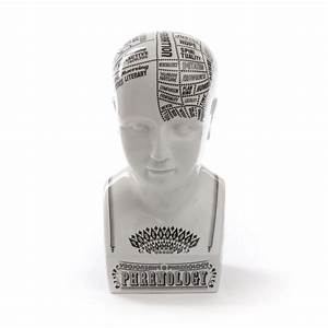 Acquista Online Il Busto In Fine Porcellana  U0026quot Phrenology