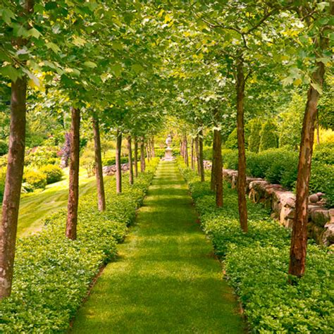 Magnificent Garden Formal Yet Inviting by Magnificent Manor House Decorating Ideas Traditional Home