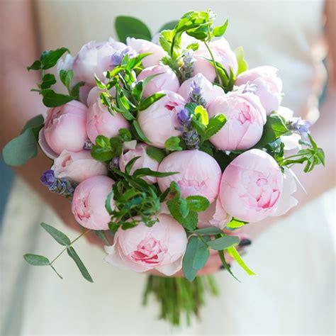 foto di fiori belli cool foto fiori belli py76 pineglen