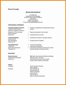 9 example of a good cv pdf gcsemaths revision With cv examples pdf
