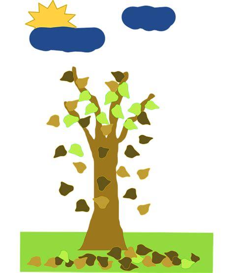 gambar pohon rumput alam wallpaper resolusi tinggi hd cari