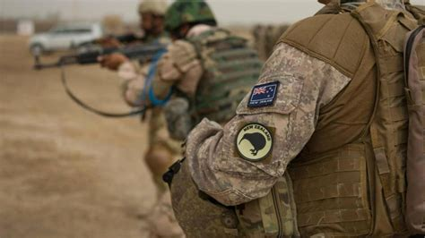 defence force drug probes average   month newshub