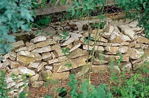 Spitzmäuse Im Garten : neudorff n tzlingsfreundlicher garten ~ Lizthompson.info Haus und Dekorationen