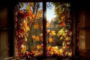 Herbst Dekoration Fenster : doublebe fotos aus der view fotocommunity ~ Watch28wear.com Haus und Dekorationen