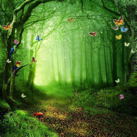Photo Backdrop Forest 6x8ft Photo Backdrop Vinyl Alice
