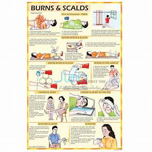Artificial Respiration Chart India Artificial Respiration